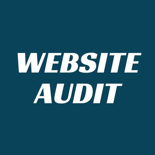 website audit product image